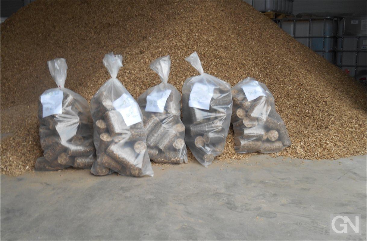 biomasse ersetzt das tropenholz. Black Bedroom Furniture Sets. Home Design Ideas
