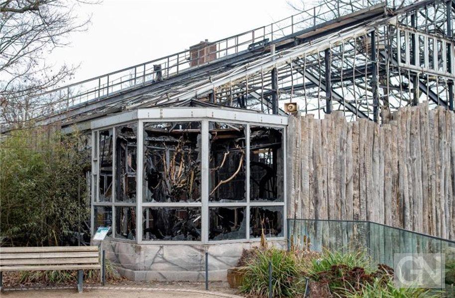 Affenhaus Zoo Krefeld