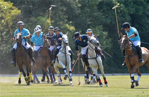 "Polo in Bad Bentheim: Starke Gegner für die ""Bad Boys"""