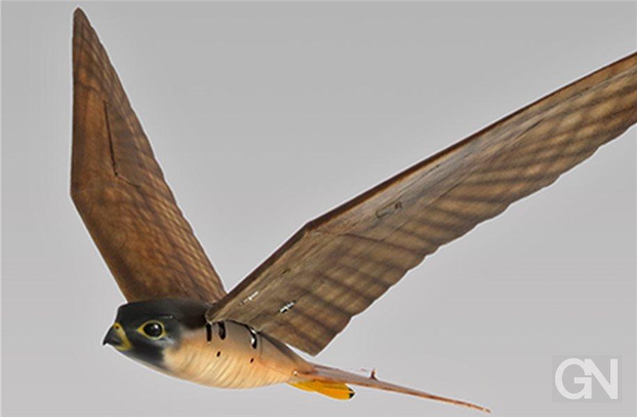 Roboter Vogel