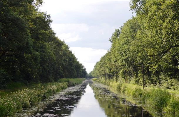 """Allee des Monats"" am Coevorden-Piccardie-Kanal"